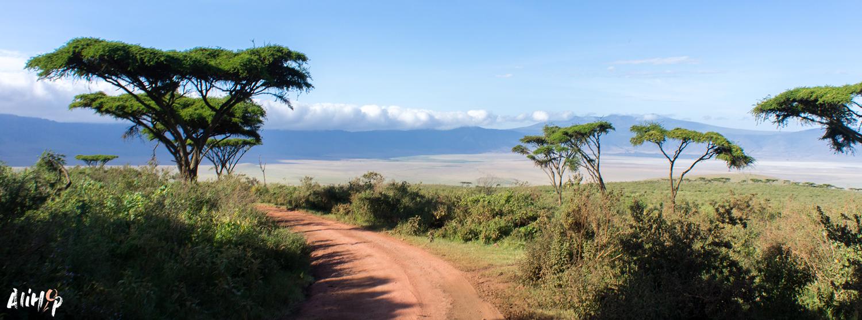 Tanzanie #4 : Suite du weekend dans le NgoronGoro